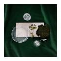Ultima Thule Plate Clear 25 cm Iittala