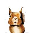 Henna Adel Poster 24 x 30 cm Squirrel