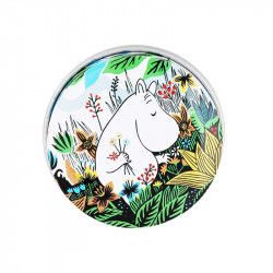 Moomin in the Meadow Small...
